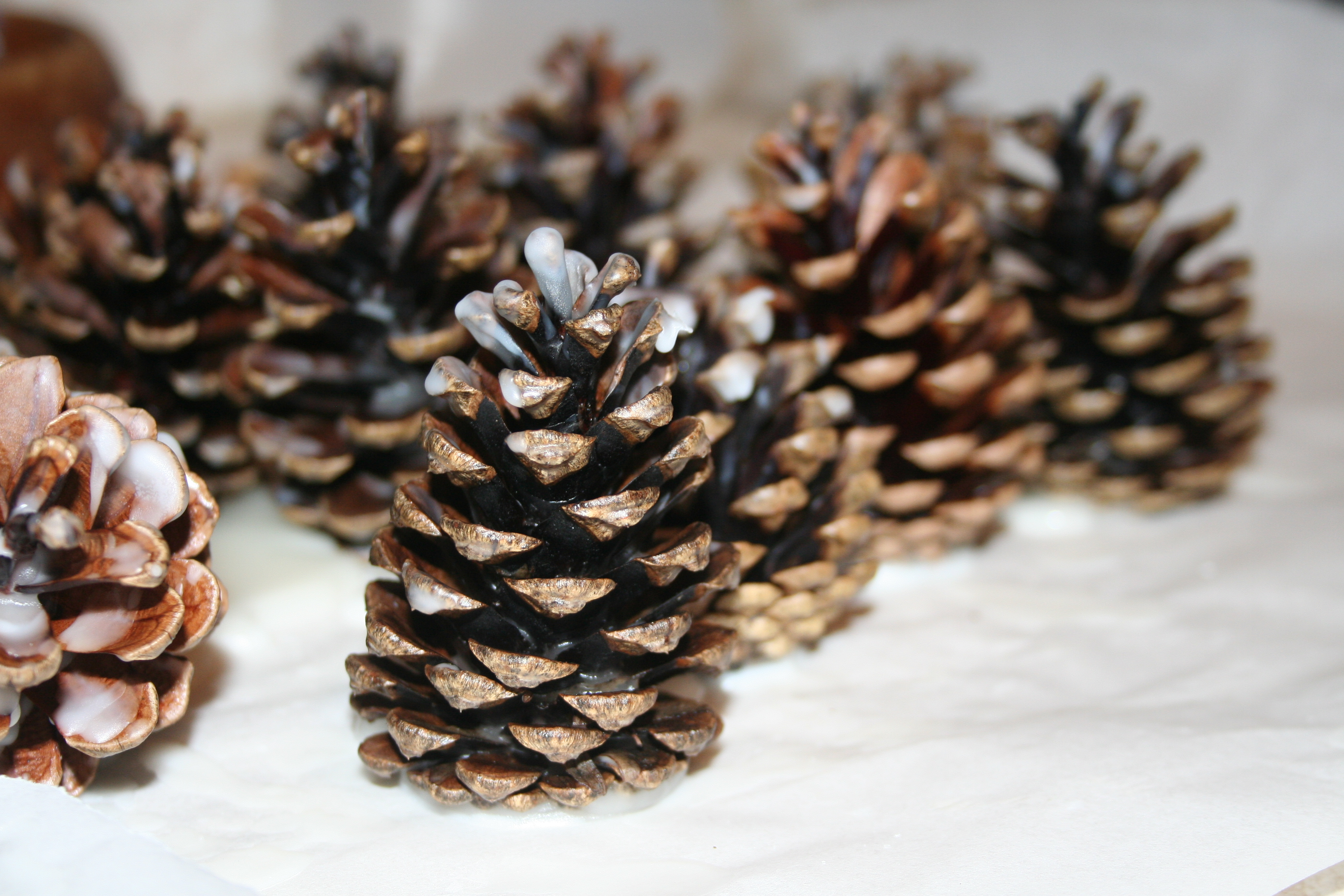 make your own pinecone firelighters