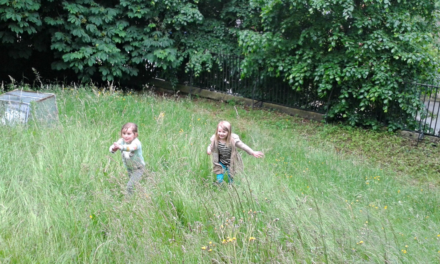 long grass fun