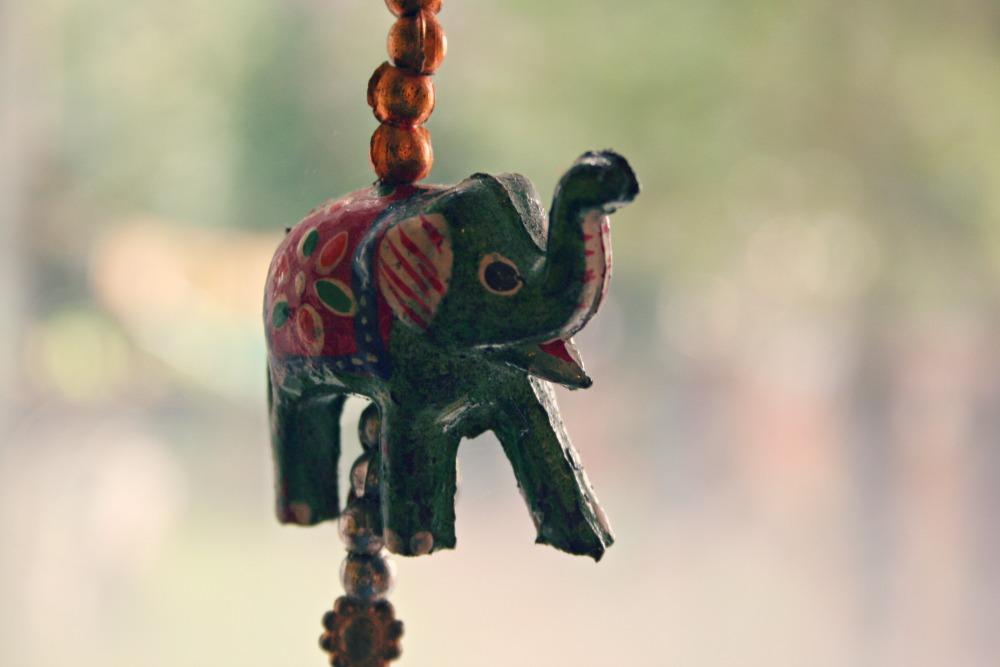 kitchen elephant