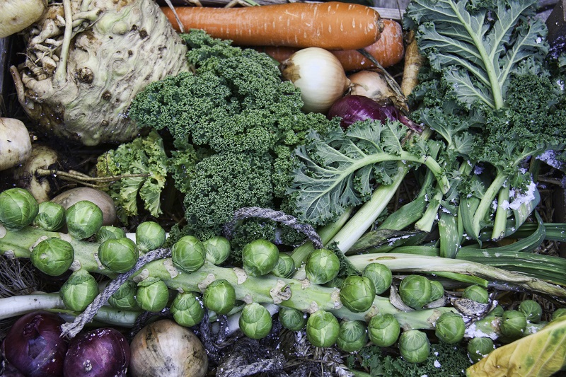 Winter Vegetables; a Planting and Eating Guide