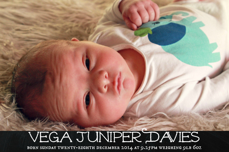 Vega birth announcement