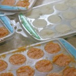 baby purees ice cube trays