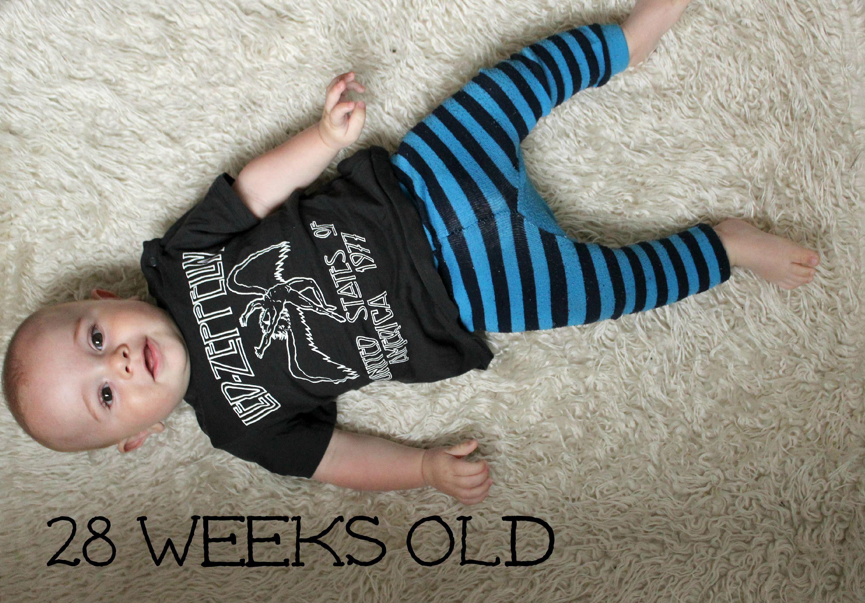 28 weeks old