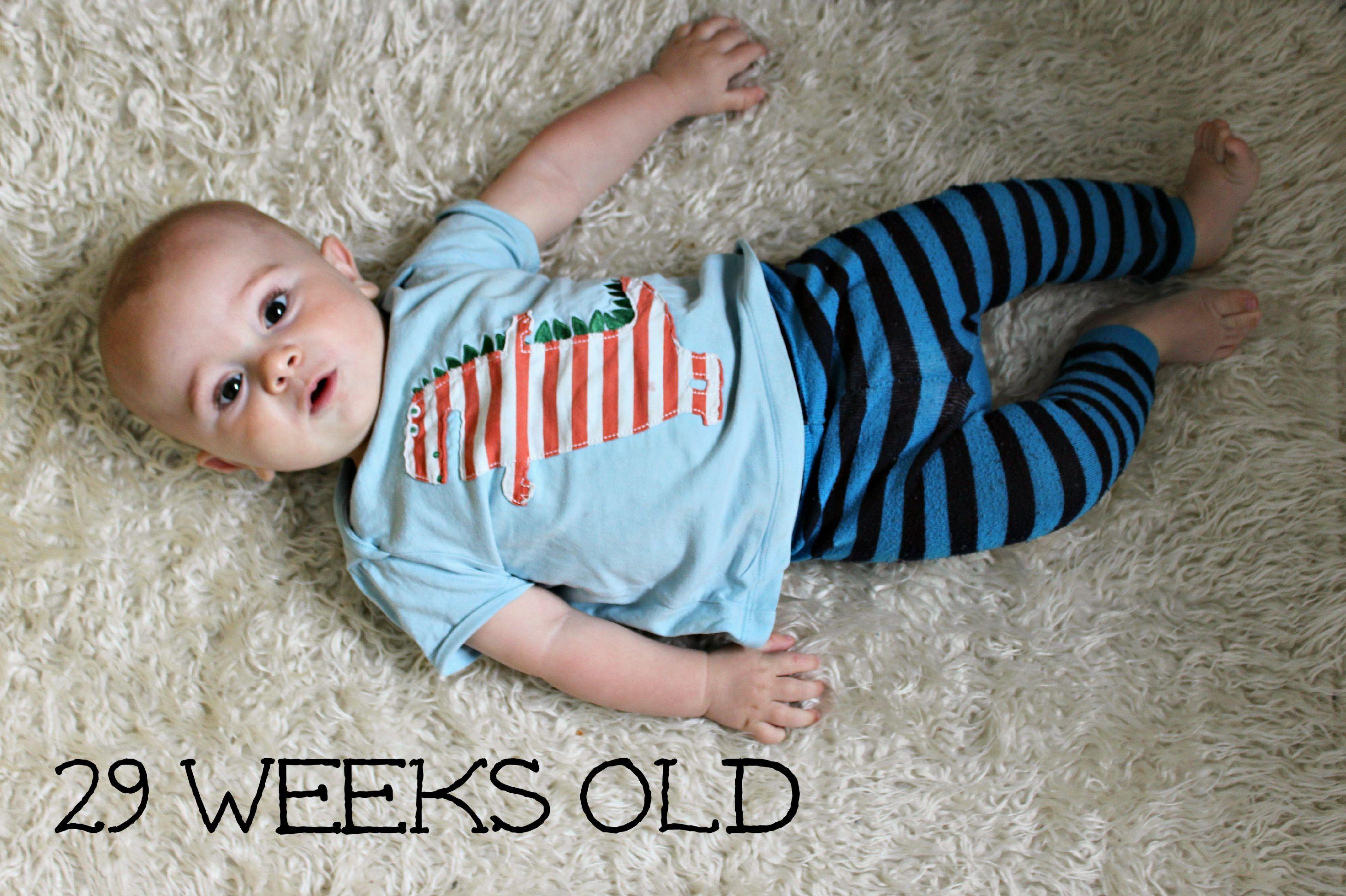 29 weeks old