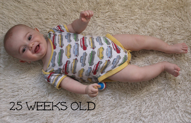 vega 25 weeks