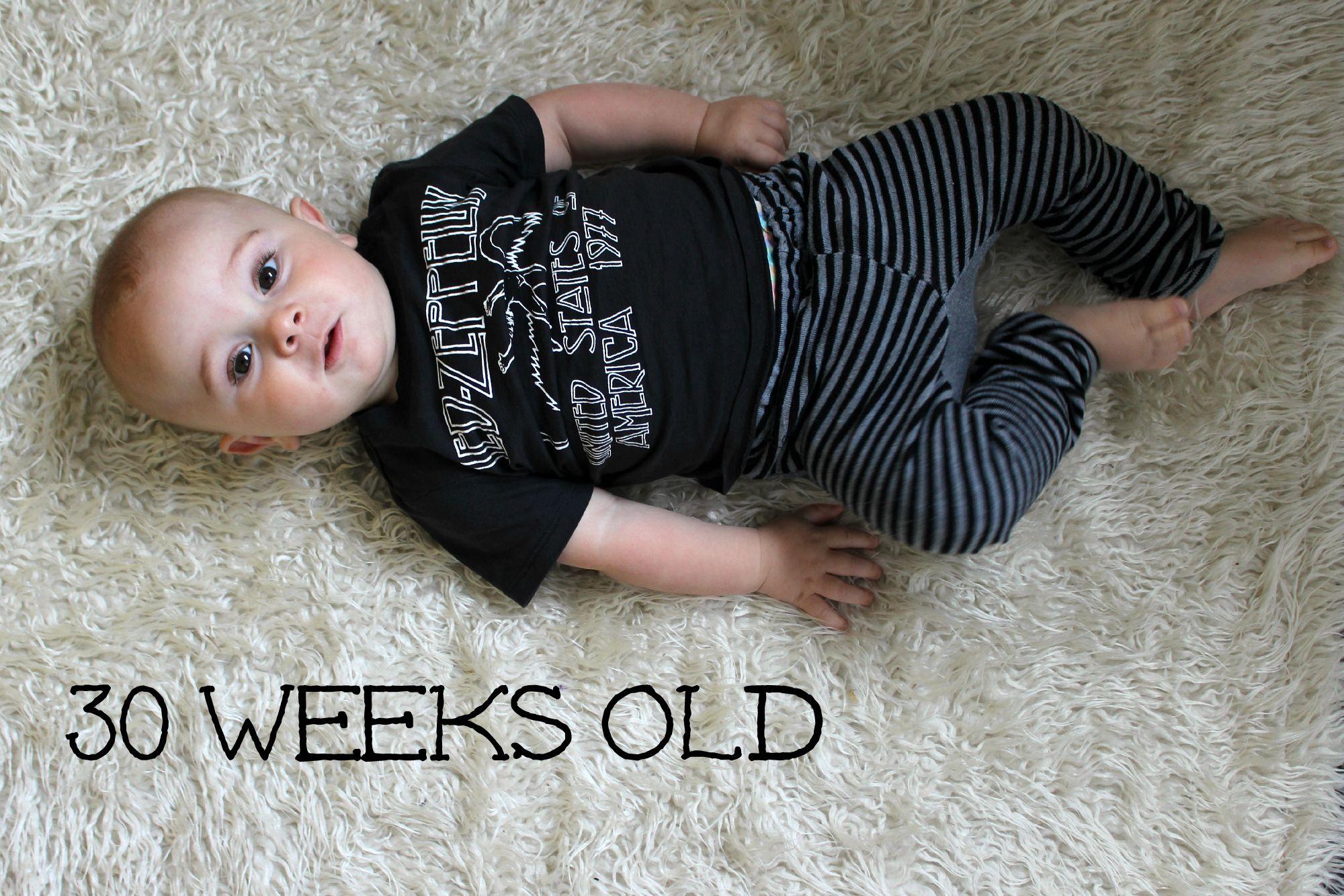 vega 30 weeks old