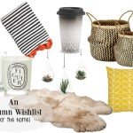 autumn wishlist for the home (1)