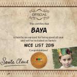 baya nice certificate