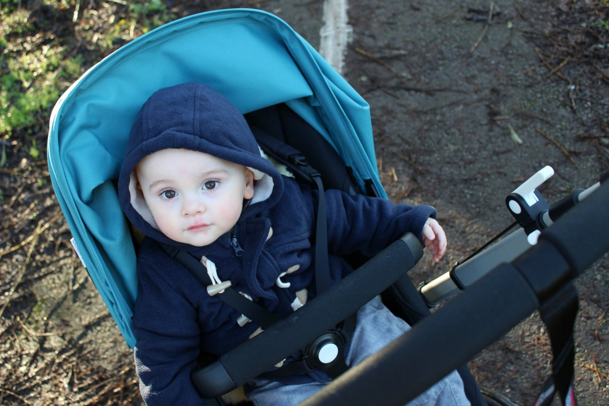 bugaboo cameleon review