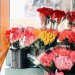 florist. fri-yay faves