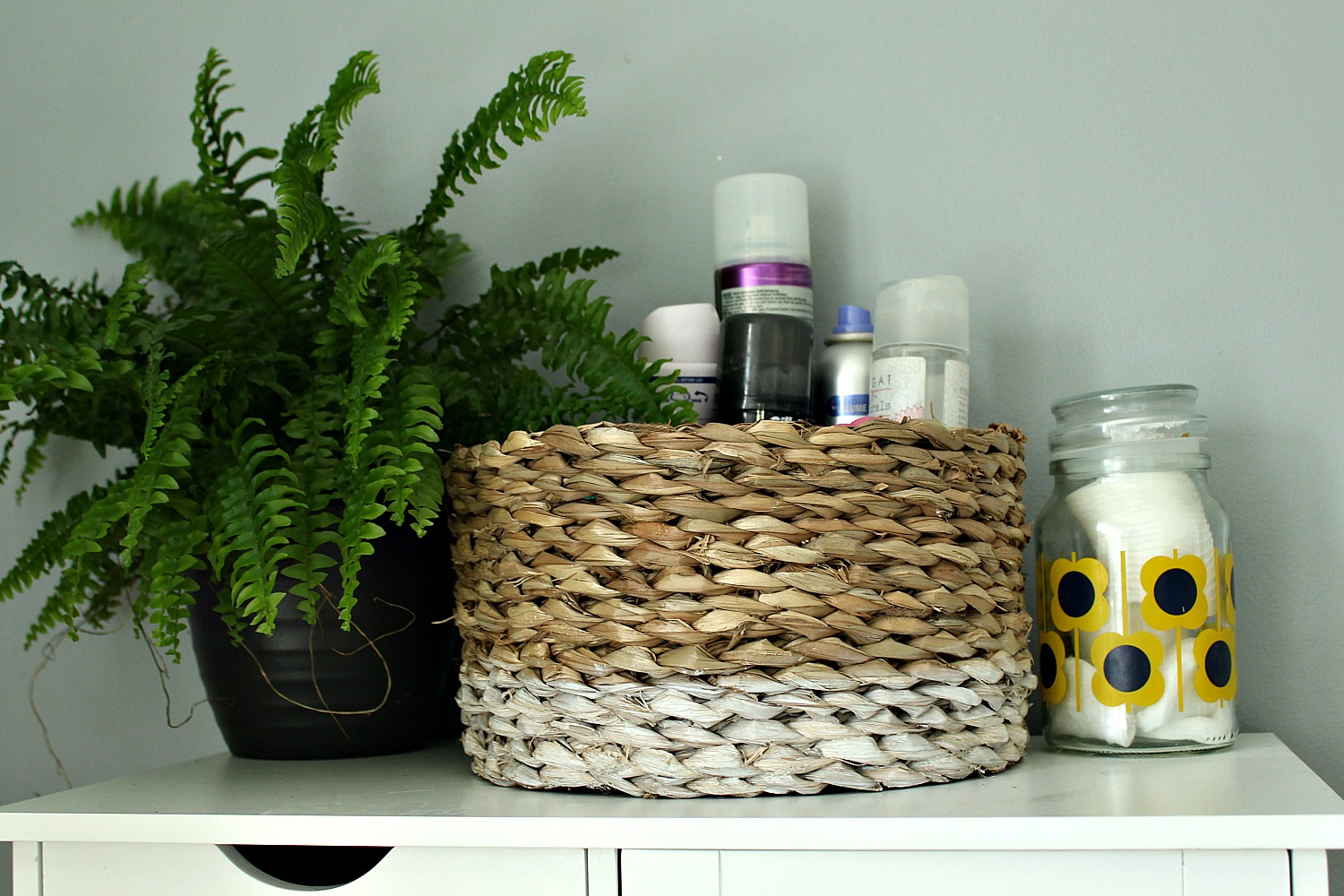 ferns and baskets