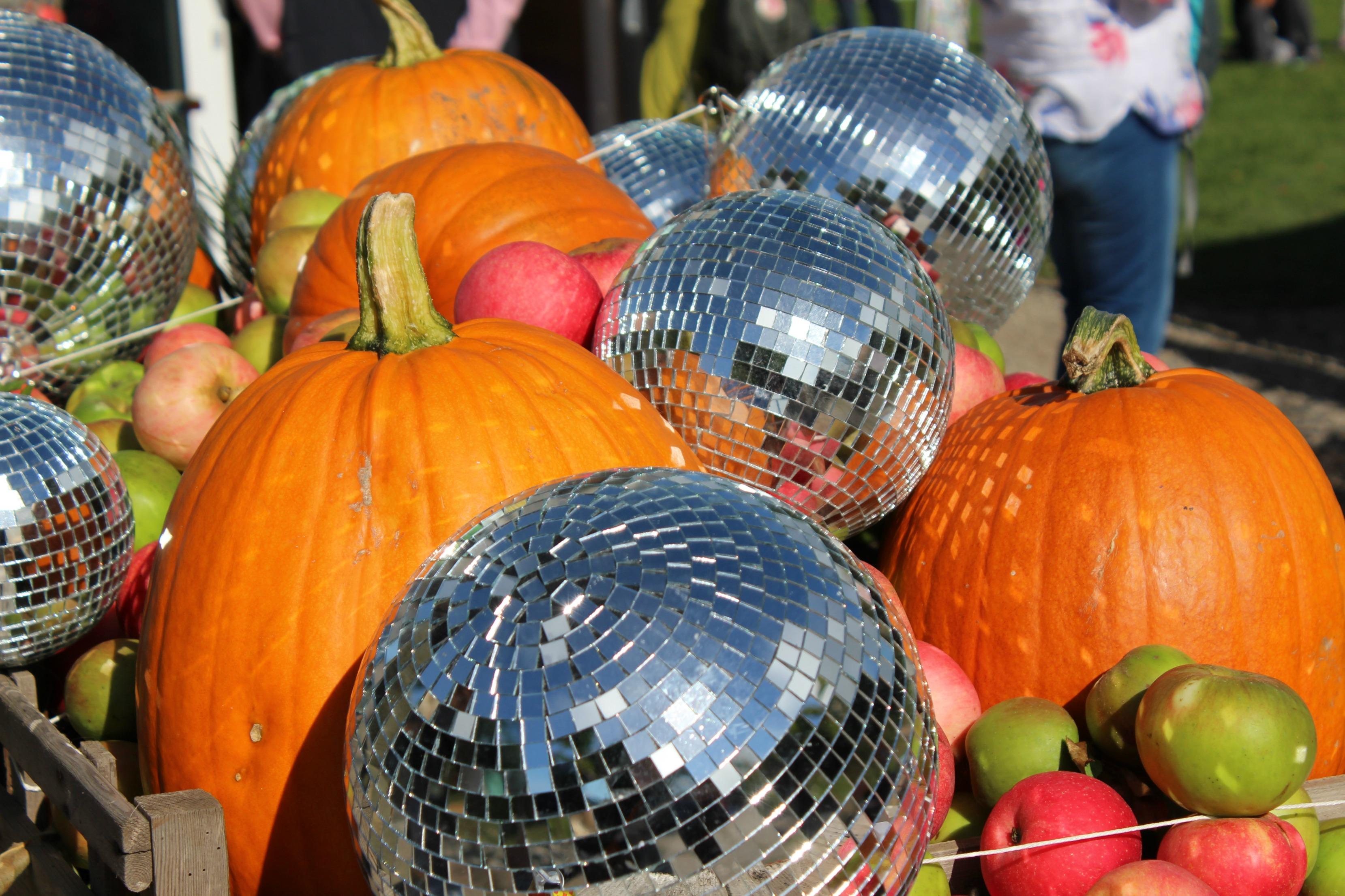 disco-balls-and-pumpkins-good-life-experience-61