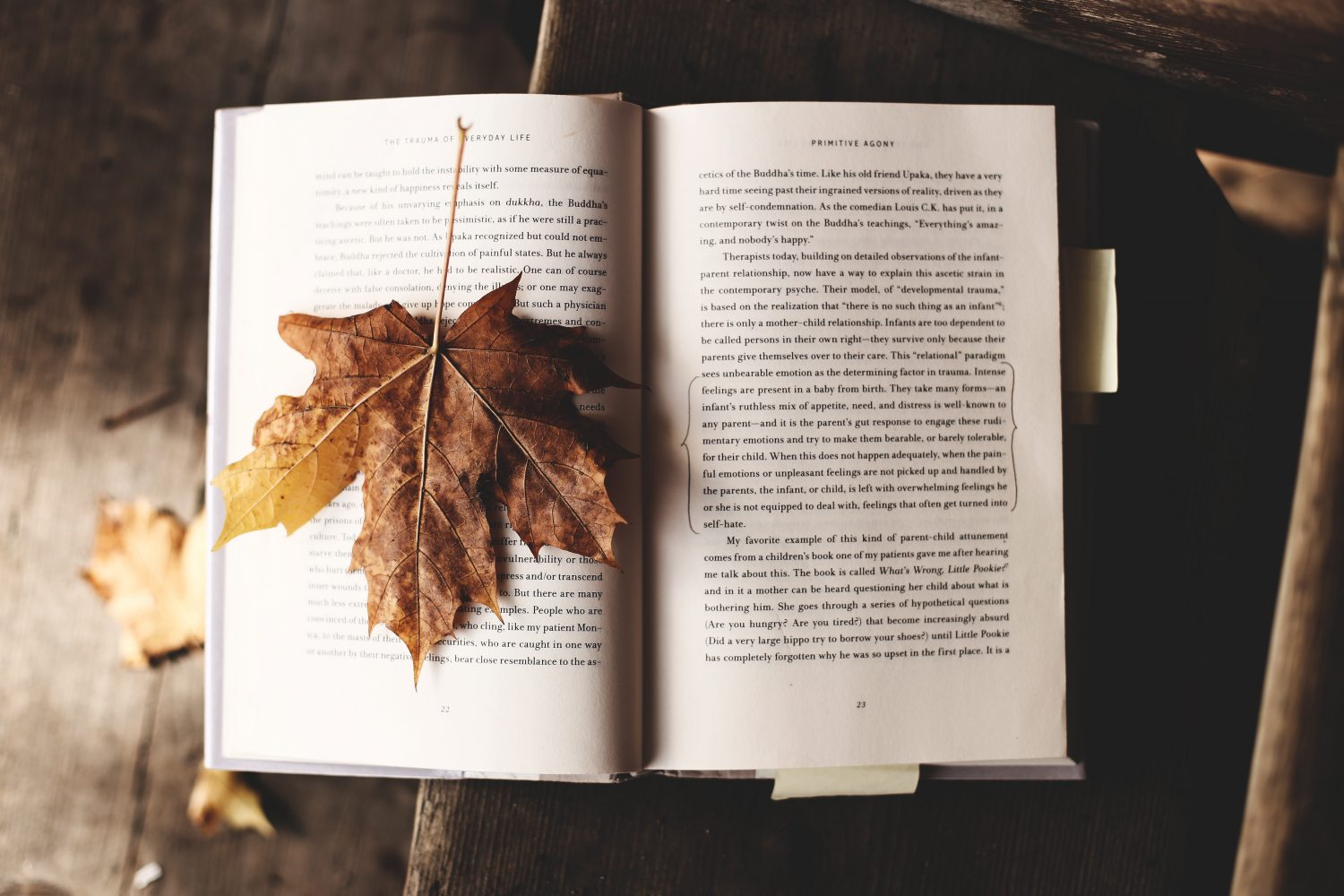 books-to-get-lost-in-this-autumn-winter